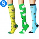 3 Pairs of Womens Knee Length Compression Socks Small