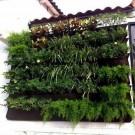 Hanging Plant Grow Bag 25 Pockets Wall Hanging Planting Bag