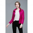 Womens Stand-up Collar Jacket K-6002 Rosered