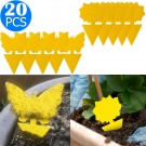 20PCS Sticky Fruit Fly Trap Bug Killers for Plant Style 1 Style 2
