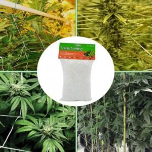 1.67X5M Garden Polyester Plant Trellis Netting-S