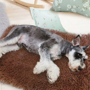 36 x 55cm Coffee Plush Soft and Warm Pet Pad Pet Bed