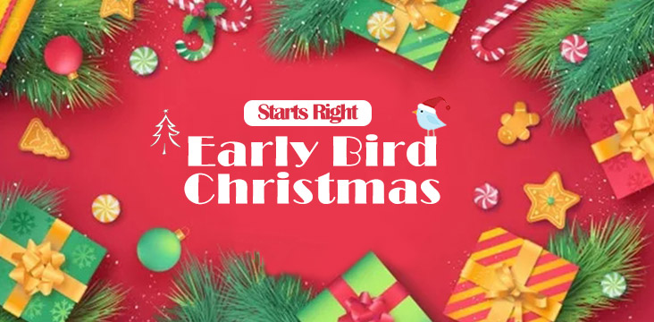Christmas EARLY BIRD SALE | Memories Last Forever But These Wonderful Deals Won't